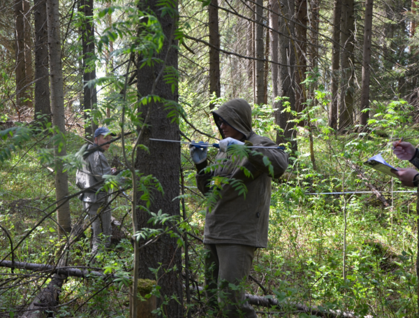Two men measuring field plots for LiDAR-based forest inventory in Russia