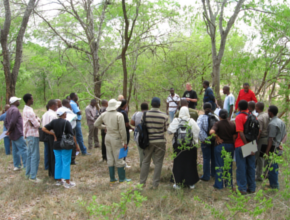 A group of people attending a ArboLiDAR training in forest